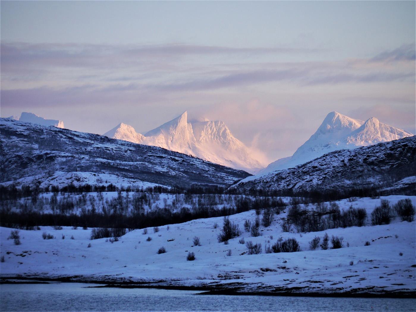 Arctic Twilight