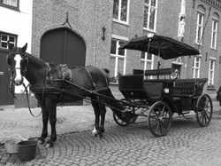 Lunch Break in Bruges