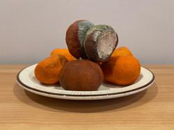 Forgotten Mandarins