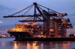 Docker's Delight