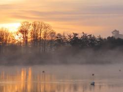 Deben Sunrise