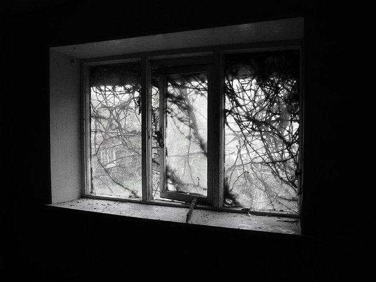 Bleak House_Sarah Bynom.jpg