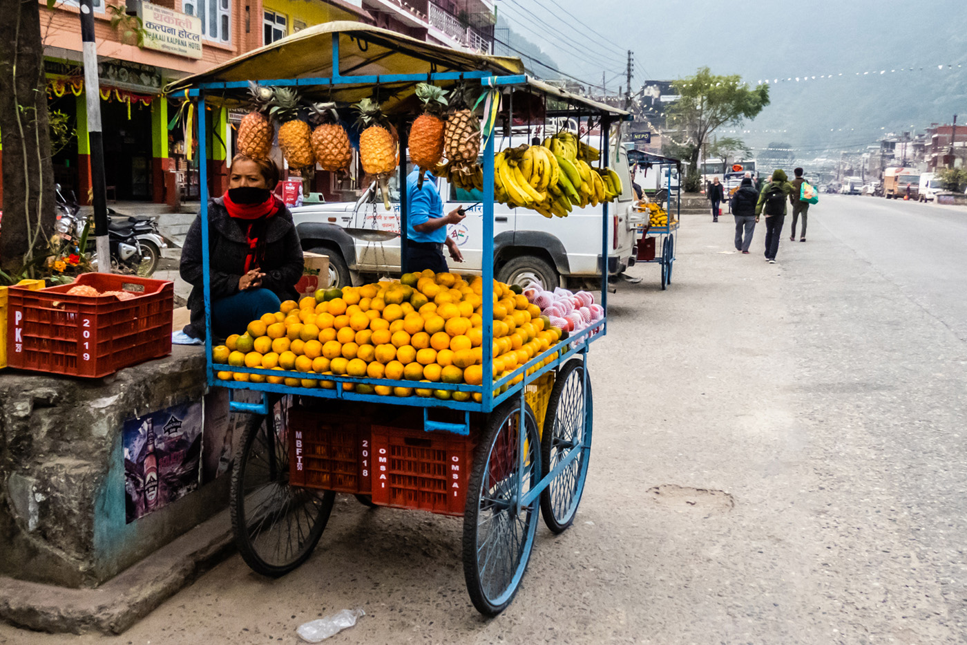 Nepali Fruit Cart