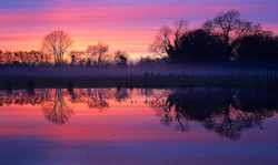 Misty Meadow Reflections