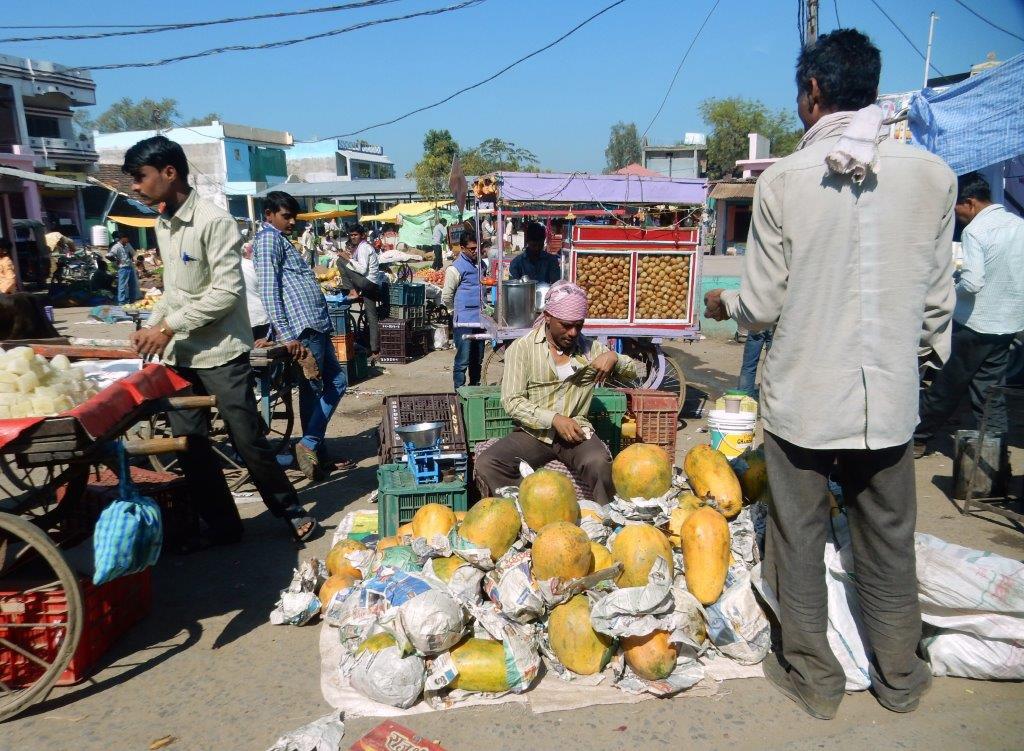Melon Farmer
