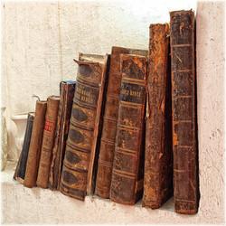 Newbourne Books