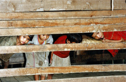 Children of Chiang Rai