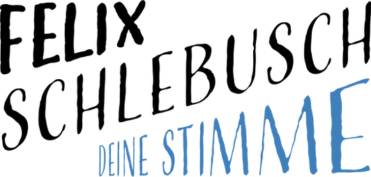 Felix Schlebusch   Deine Stimme. Das neue Logo in schwarz und blau auf weißem Grund.