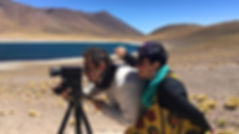 video artist