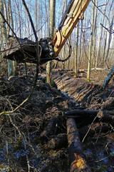 Kraavi-kaevamine-ekskavaatoriga