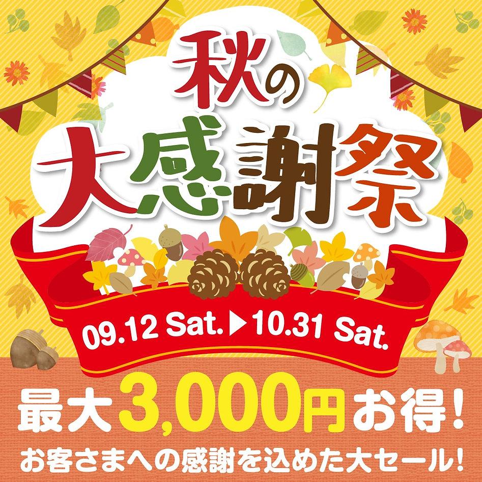 2稿_200911_秋の大感謝祭1-min.jpg