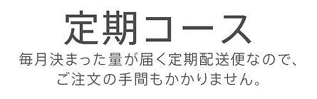210218_ビクラス販売サイト9-min.jpg