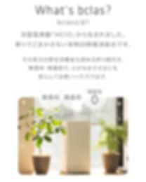 20191226_ビクラス販売サイト1.jpg