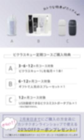 20200110_ビクラス販売サイト.jpg