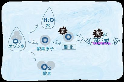 オゾン水 説明