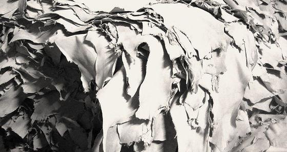 D'Alessio Galliano white leather.jpg