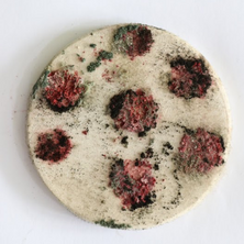 Nidiya Ceramic Micro Fungus 9.png