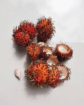 Rambutan's Colour 1.jpg