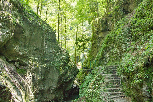 Stone stairs and the path that leads dee