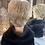 Thumbnail: Soft Golden Blonde Pixie Fibre Wig