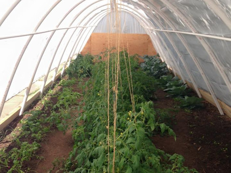What the Heck is a Hoop House?