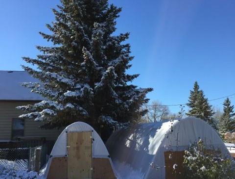 11:14 hoop houses in LaBonte Park at FLV