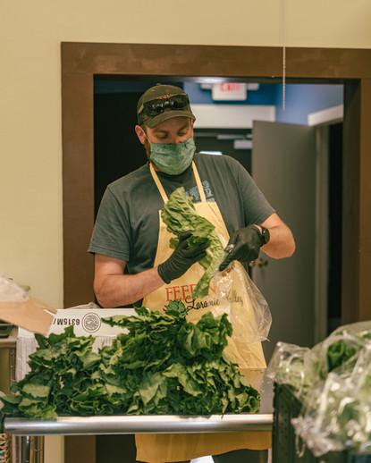 6.3.2020. Shares. Reece bagging lettuce.