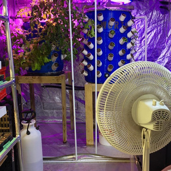 aeroponic system at building.jpg