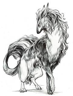 longhair daemon vitale.jpg