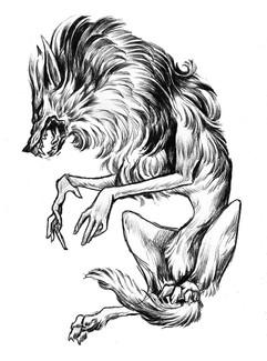 Pouncing wolf.jpg