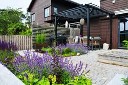 Formstark trädgård i Hovås