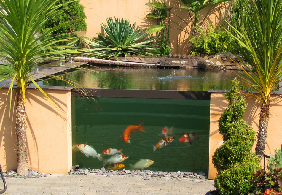 Orange render chosen by client to compliment their Koi