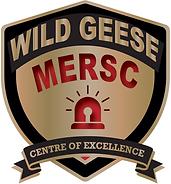 MERSC NEW LOGO 2020-07-29.png