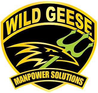 WGG MANPOWER SOLUTIONS_NEW COLOR.png