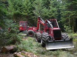 2010 Vosges 034.jpg