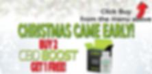WebsiteMobileBanner_ChristmasCameEarly3.