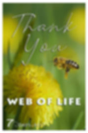 Thank you web of life.jpg