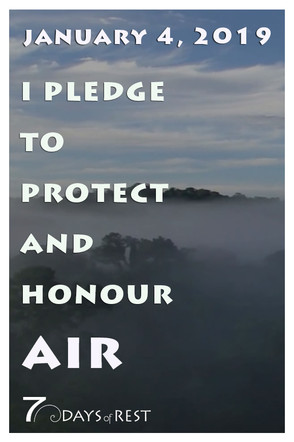 protect and honour AIR 2 xr.jpg