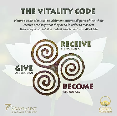 Vitality Code.webp