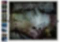 Screen Shot 2020-02-28 at 12.55.20.png