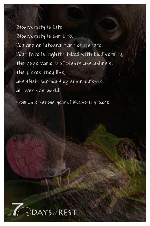 Quote Biodiversity.jpg