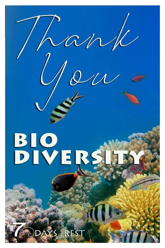 Thank you Biodiversity.jpg