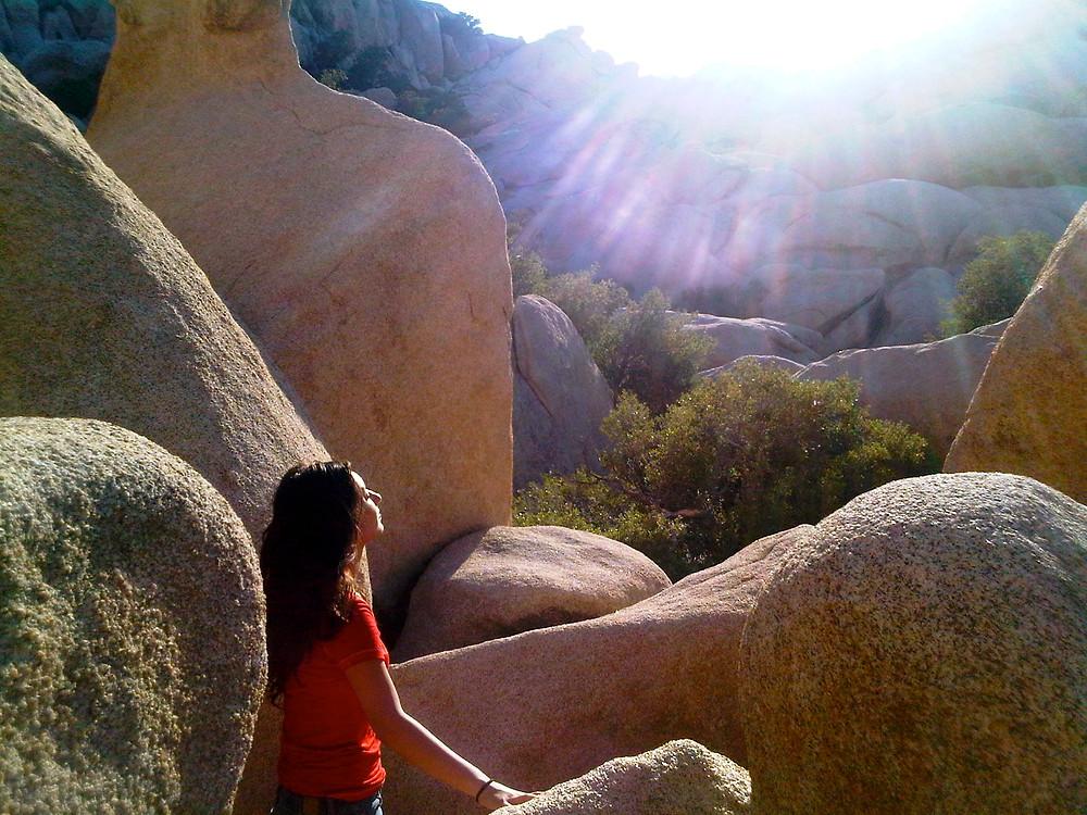 NewStartSpark.com Desert Sunlight.jpg