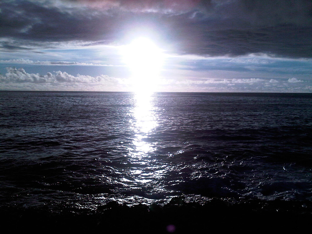 www@Mari Shintani Aloha-Ai-Wellness.com, New Start Spark, Wellness, Life Coach, Health
