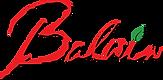 balwin logo.png