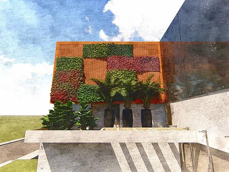 Jardim Vertical - Parede Verde