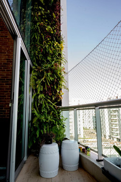 plantas-verticais-parede-verde-foto (9).