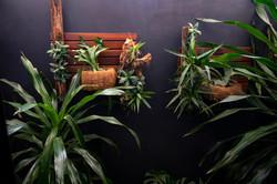 plantas-verticais-parede-verde-foto (37)