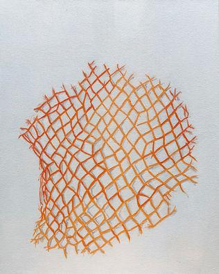 Scraps (orange net)