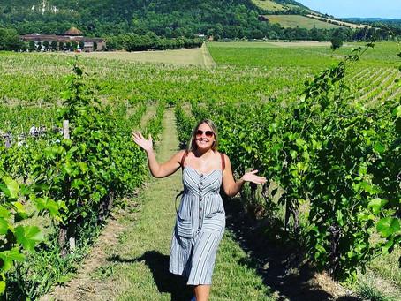Denbies Wine Estate, UK (July 2020)